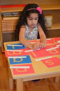 Second Year of Montessori Education