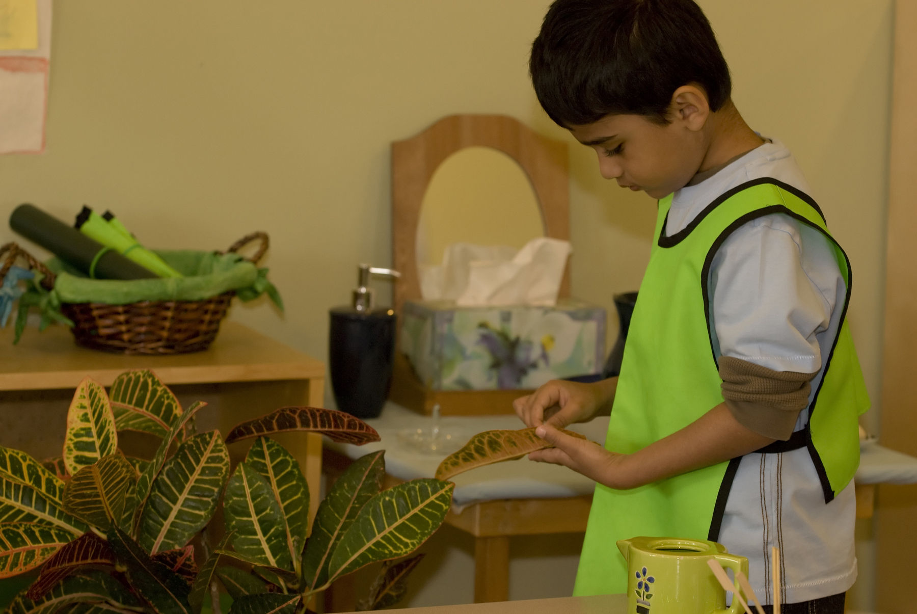 Caring for plants with practical life skills